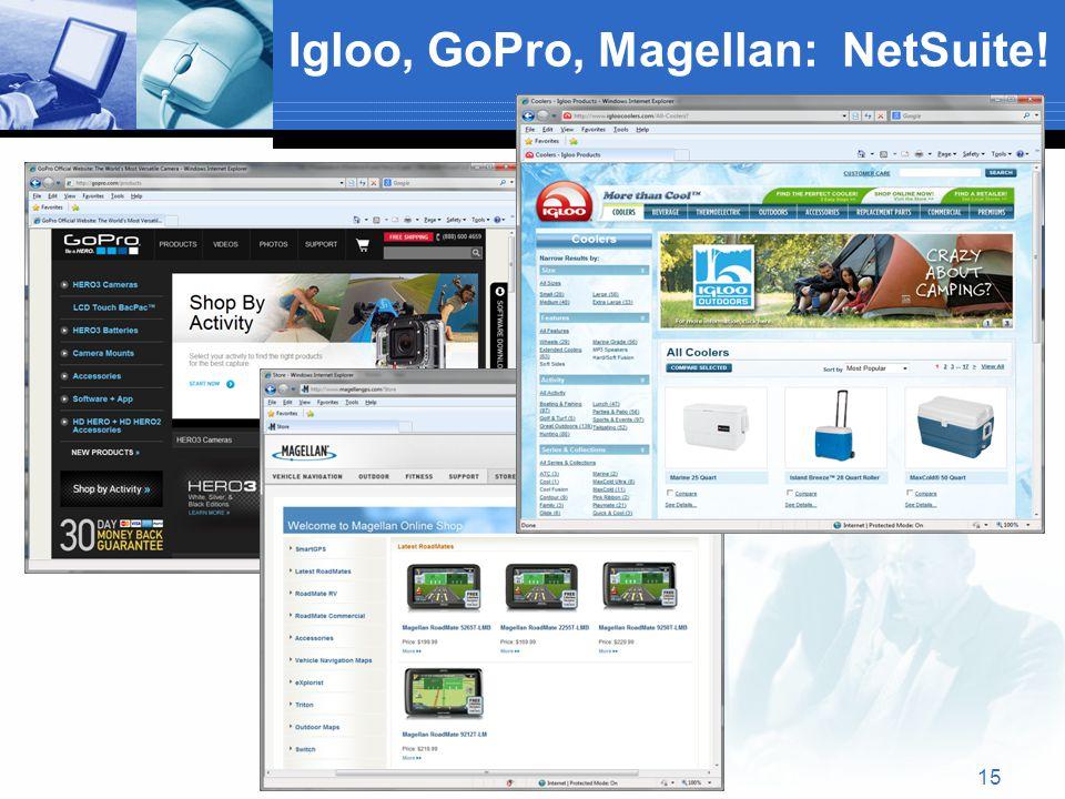 Igloo, GoPro, Magellan: NetSuite! 15