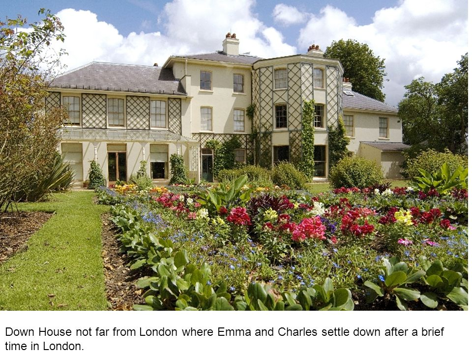 Darwin Naturally Selects Emma Down House not far from London where Emma and Charles settle down after a brief time in London.