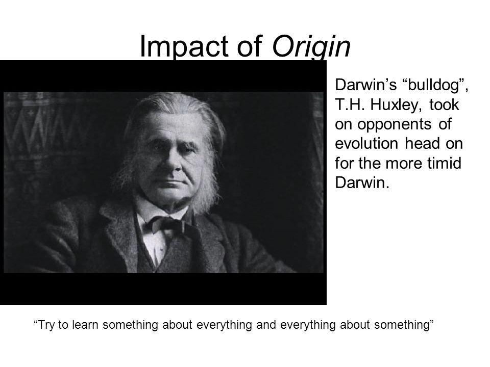 Impact of Origin Darwin's bulldog , T.H.