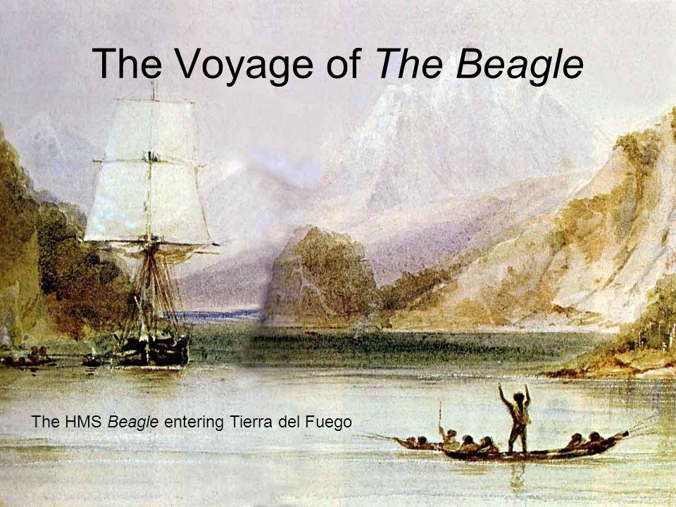 The Voyage of The Beagle The HMS Beagle entering Tierra del Fuego