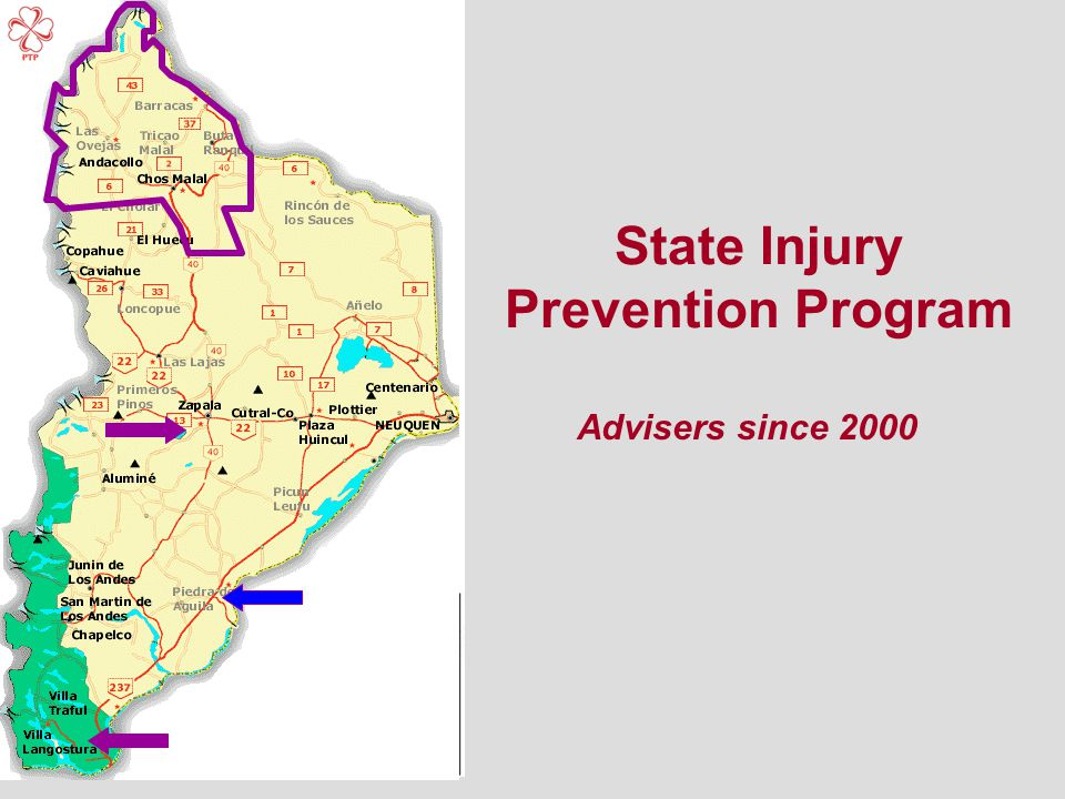 State Injury Prevention Program Advisers since 2000