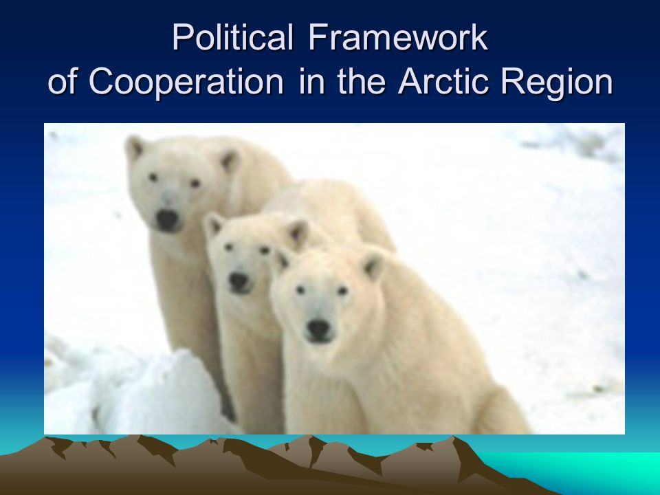 The Arctic region under transition The problems of the Arctic region require a certain desecuritization .