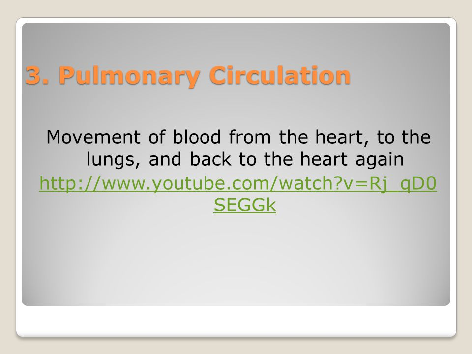 3. Pulmonary Circulation Movement of blood from the heart, to the lungs, and back to the heart again http://www.youtube.com/watch?v=Rj_qD0 SEGGk
