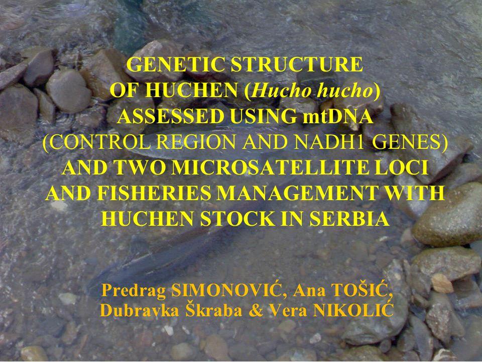 Huchen are endemic for the River Danube basin (Holčik, 1990).