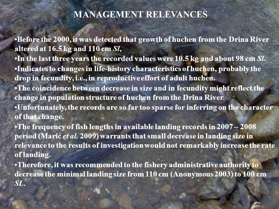 The only available records about the huchen production are those from the Fisheries Management Plan for the Drina River, assessed in 2003.