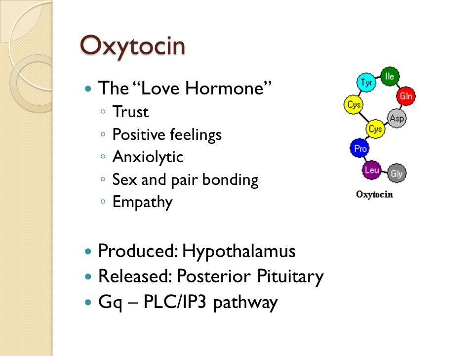 Oxytocin The Love Hormone ◦ Trust ◦ Positive feelings ◦ Anxiolytic ◦ Sex and pair bonding ◦ Empathy Produced: Hypothalamus Released: Posterior Pituitary Gq – PLC/IP3 pathway
