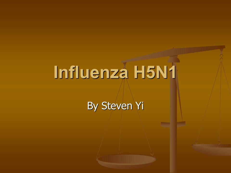 Influenza H5N1 By Steven Yi