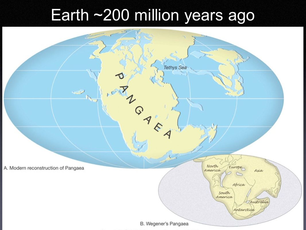 Earth ~200 million years ago