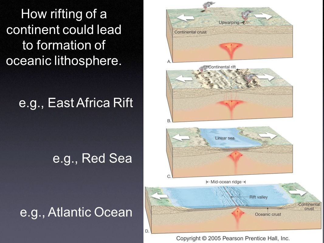 How rifting of a continent could lead to formation of oceanic lithosphere.