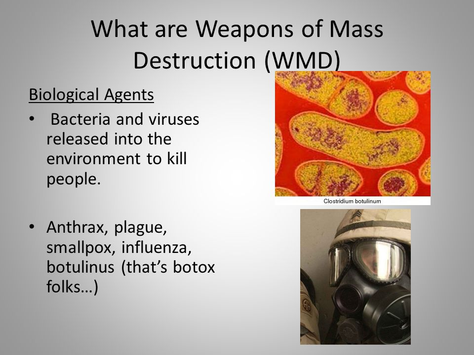 What are Weapons of Mass Destruction (WMD) Biological Agents Bacteria and viruses released into the environment to kill people. Anthrax, plague, small