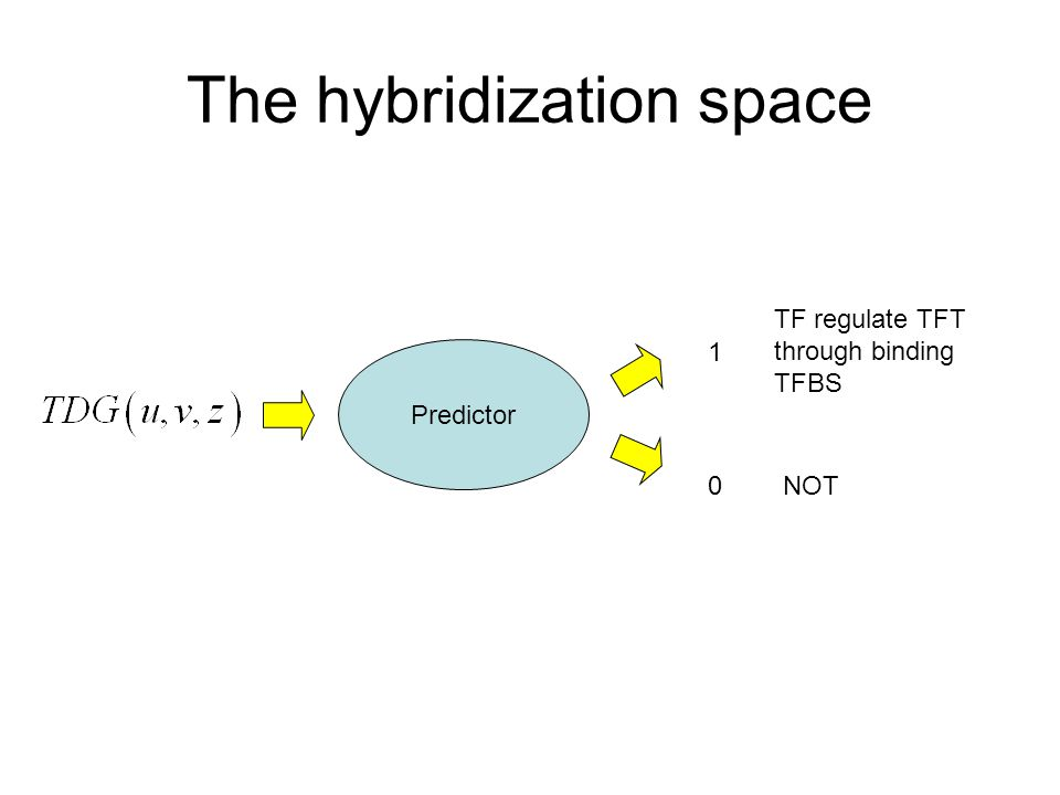 The hybridization space Predictor 1 0 TF regulate TFT through binding TFBS NOT