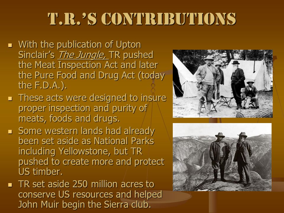 T.R.'s Contributions With the publication of Upton Sinclair's The Jungle, TR pushed the Meat Inspection Act and later the Pure Food and Drug Act (today the F.D.A.).