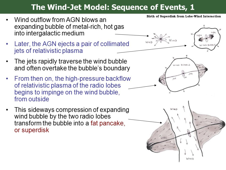 The Wind-Jet Model: Sequence of Events, 1 Wind outflow from AGN blows an expanding bubble of metal-rich, hot gas into intergalactic medium Later, the AGN ejects a pair of collimated jets of relativistic plasma The jets rapidly traverse the wind bubble and often overtake the bubble's boundary From then on, the high-pressure backflow of relativistic plasma of the radio lobes begins to impinge on the wind bubble, from outside This sideways compression of expanding wind bubble by the two radio lobes transform the bubble into a fat pancake, or superdisk