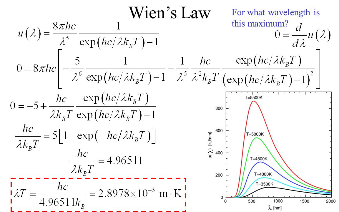 Wien's Law For what wavelength is this maximum