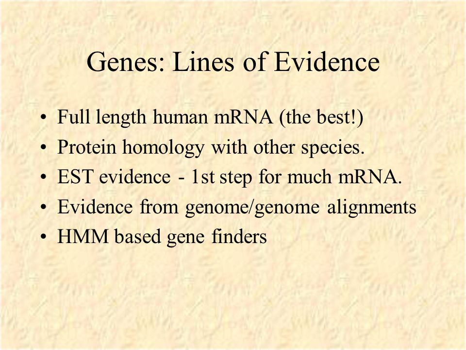 Genes: Lines of Evidence Full length human mRNA (the best!) Protein homology with other species.