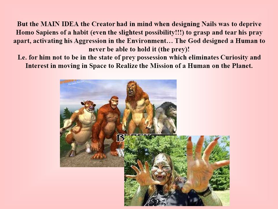 But the MAIN IDEA the Creator had in mind when designing Nails was to deprive Homo Sapiens of a habit (even the slightest possibility!!!) to grasp and tear his pray apart, activating his Aggression in the Environment… The God designed a Human to never be able to hold it (the prey).