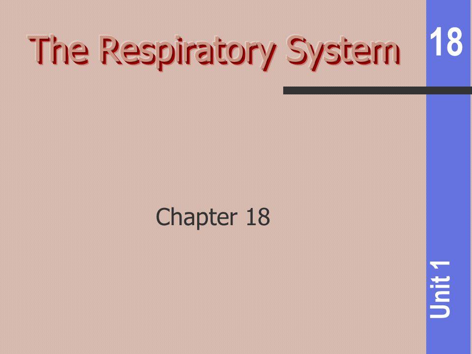 18 Unit 1 Chapter 18