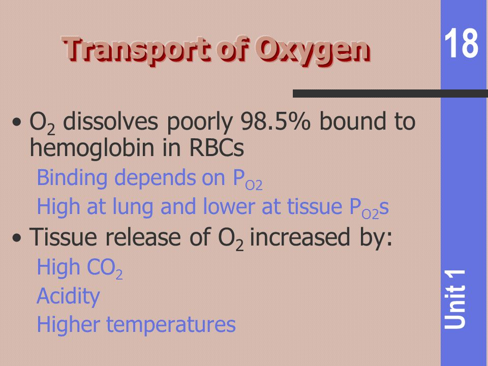 18 Unit 1 O 2 dissolves poorly 98.5% bound to hemoglobin in RBCs Binding depends on P O2 High at lung and lower at tissue P O2 s Tissue release of O 2