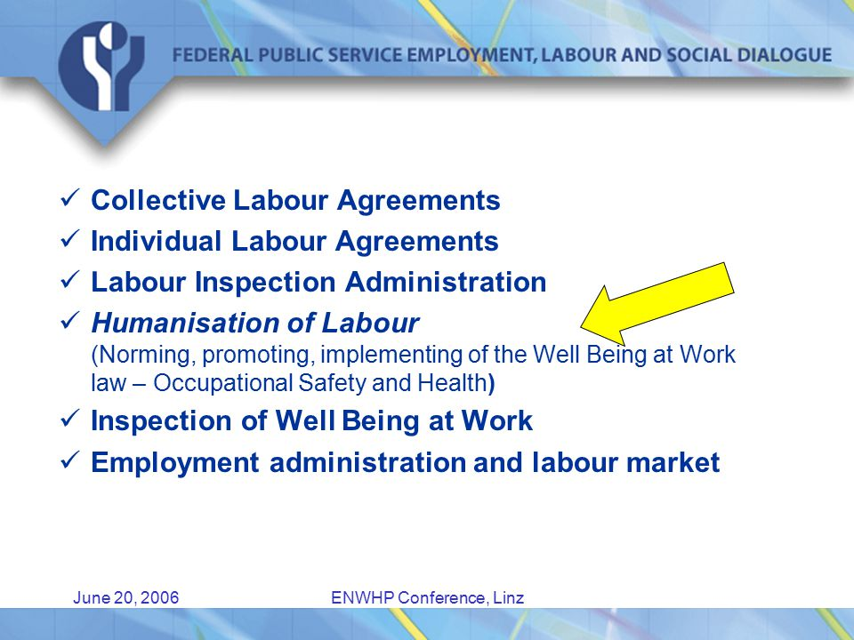 June 20, 2006ENWHP Conference, Linz Collective Labour Agreements Individual Labour Agreements Labour Inspection Administration Humanisation of Labour (Norming, promoting, implementing of the Well Being at Work law – Occupational Safety and Health) Inspection of Well Being at Work Employment administration and labour market