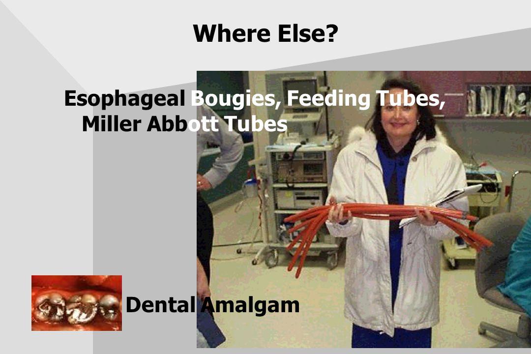 Where Else? Esophageal Bougies, Feeding Tubes, Miller Abbott Tubes Dental Amalgam