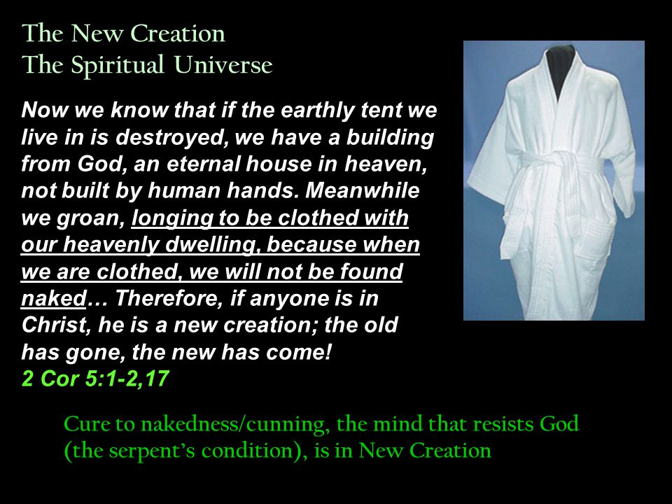 Natural Creation God created the great creatures of the sea and every living and moving thing with which the water teems, according to their kinds, and every winged bird according to its kind.