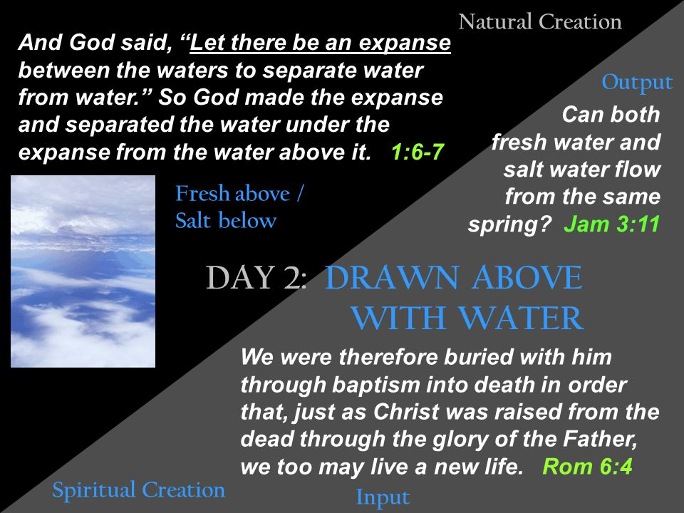 Natural Creation Spiritual Creation Then God said, Let the land produce vegetation: seed-bearing plants and trees on the land that bear fruit with seed in it, according to their various kinds. And it was so.