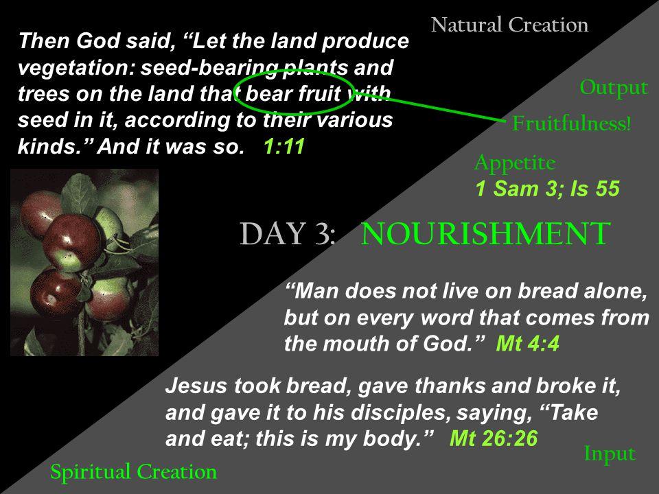 Illumination Baptism Communion Bible Reading HEAVEN WATERS EARTH 3 2 1 Spiritual Creation: The Disciple's Universe 6 5 4 .