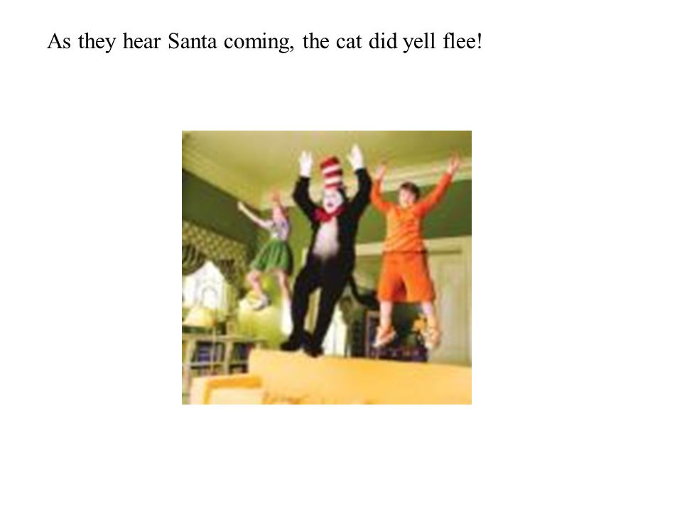As they hear Santa coming, the cat did yell flee!