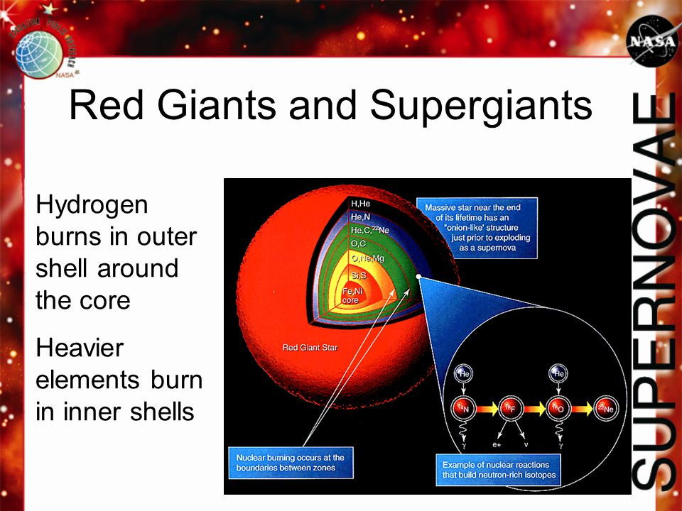 Red Giants and Supergiants Hydrogen burns in outer shell around the core Heavier elements burn in inner shells