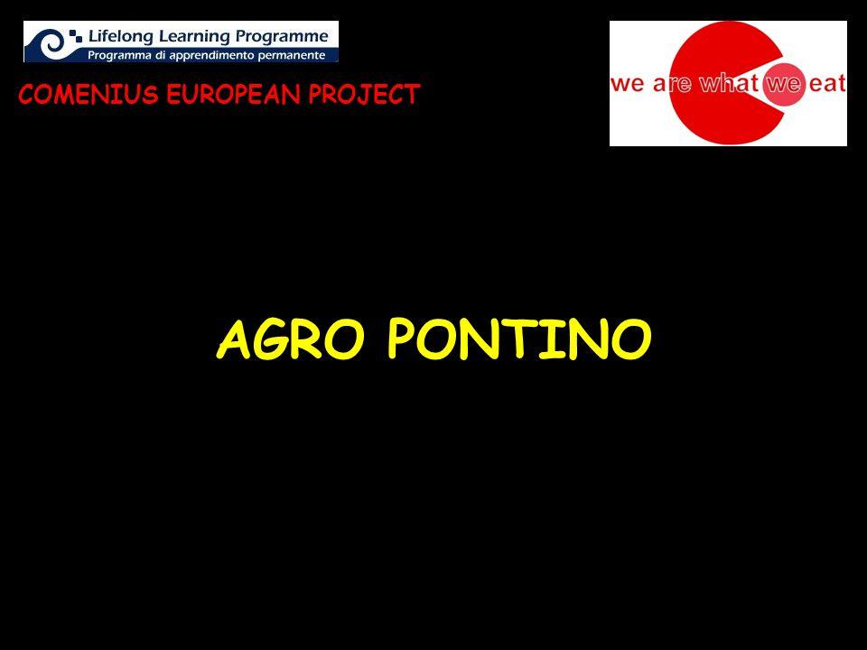 AGRO PONTINO COMENIUS EUROPEAN PROJECT