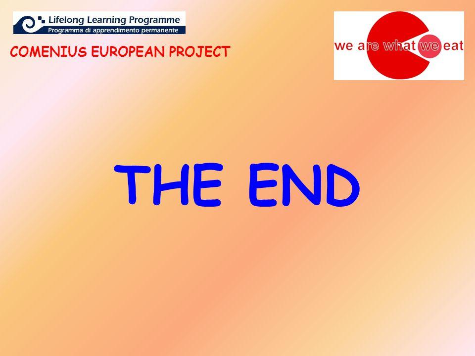 THE END COMENIUS EUROPEAN PROJECT