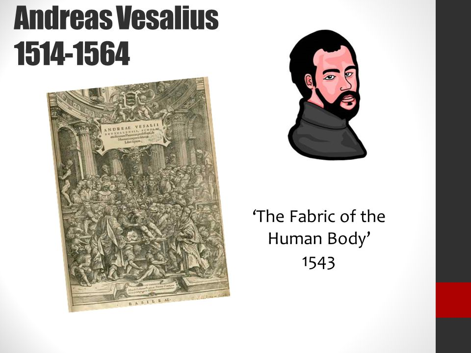 Andreas Vesalius 1514-1564 'The Fabric of the Human Body' 1543