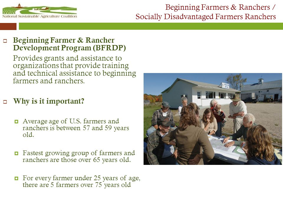 Beginning Farmers & Ranchers / Socially Disadvantaged Farmers Ranchers  Beginning Farmer & Rancher Development Program (BFRDP) Provides grants and assistance to organizations that provide training and technical assistance to beginning farmers and ranchers.