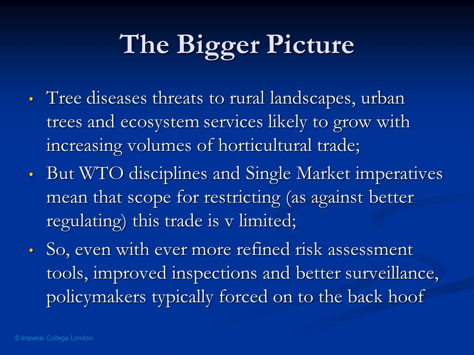 © Imperial College London The Bigger Picture Tree diseases threats to rural landscapes, urban trees and ecosystem services likely to grow with increasing volumes of horticultural trade; Tree diseases threats to rural landscapes, urban trees and ecosystem services likely to grow with increasing volumes of horticultural trade; But WTO disciplines and Single Market imperatives mean that scope for restricting (as against better regulating) this trade is v limited; But WTO disciplines and Single Market imperatives mean that scope for restricting (as against better regulating) this trade is v limited; So, even with ever more refined risk assessment tools, improved inspections and better surveillance, policymakers typically forced on to the back hoof So, even with ever more refined risk assessment tools, improved inspections and better surveillance, policymakers typically forced on to the back hoof