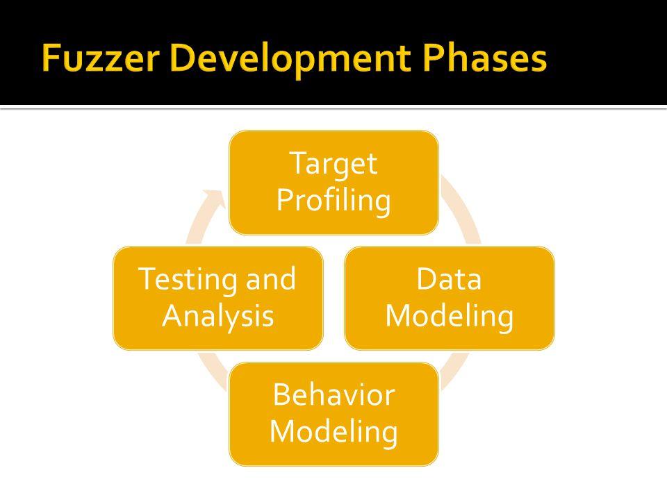 Target Profiling Data Modeling Behavior Modeling Testing and Analysis