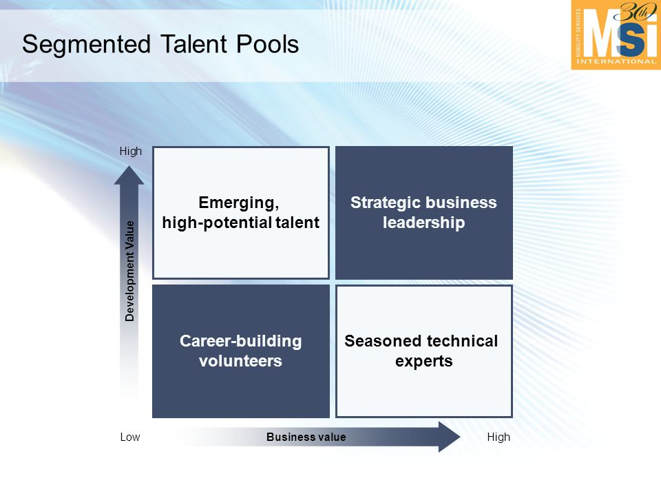 Segmented Talent Pools Strategic business leadership Emerging, high-potential talent Seasoned technical experts Career-building volunteers Business value LowHigh Development Value