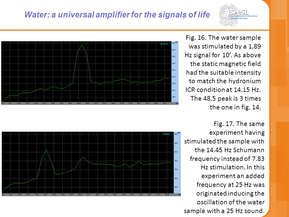Fig. 16. The water sample was stimulated by a 1,89 Hz signal for 10'.