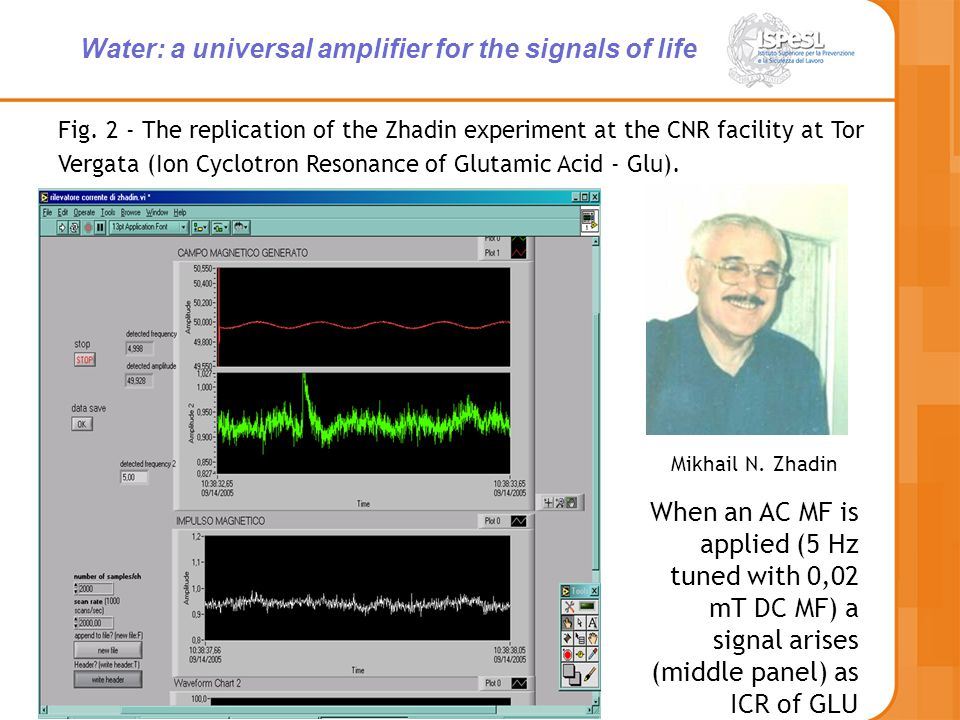 Fig. 2 - The replication of the Zhadin experiment at the CNR facility at Tor Vergata (Ion Cyclotron Resonance of Glutamic Acid - Glu). Mikhail N. Zhad