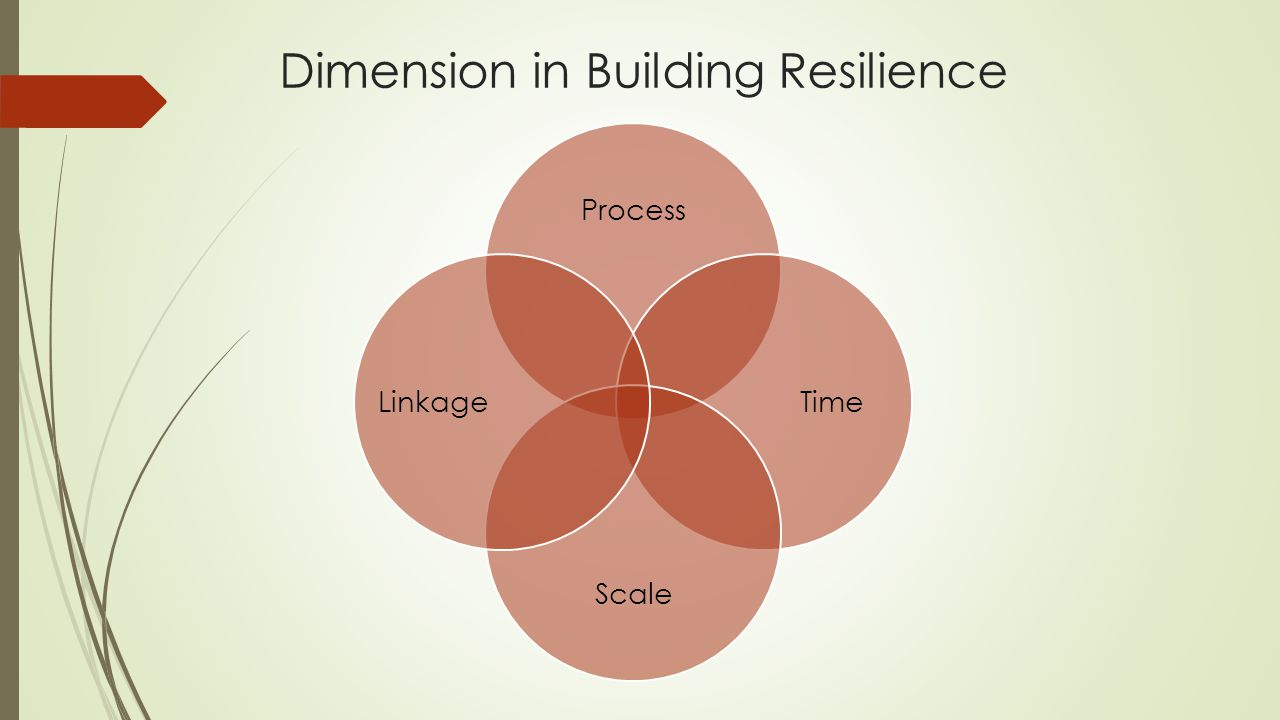 Dimension in Building Resilience Process Time Scale Linkage