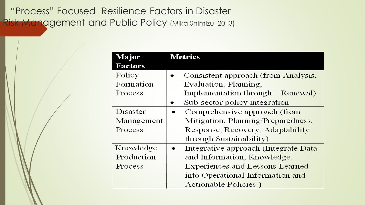 Process Focused Resilience Factors in Disaster Risk Management and Public Policy (Mika Shimizu, 2013)