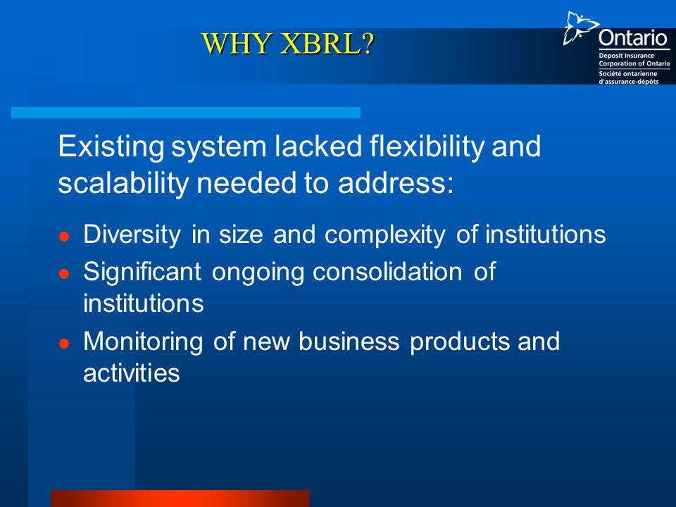 WHY XBRL.