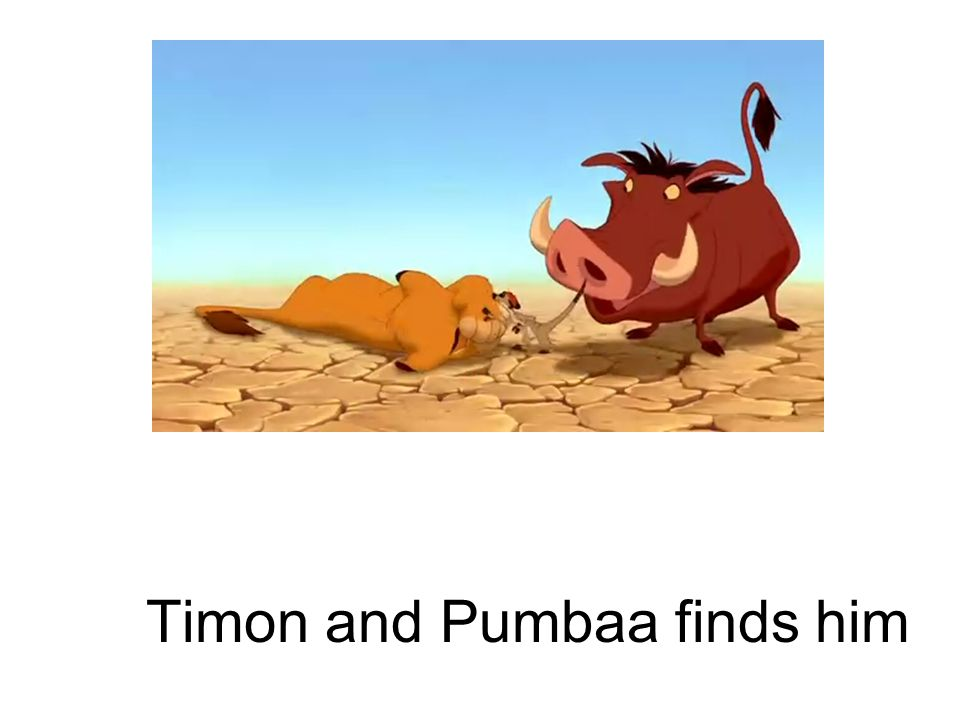 Timon and Pumbaa finds him