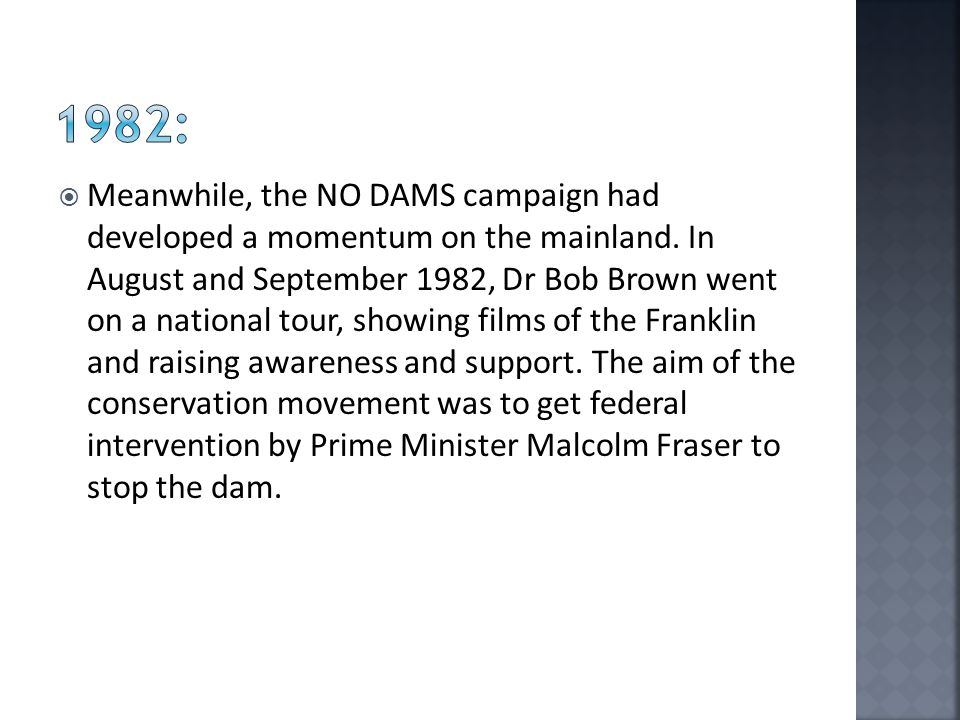  Meanwhile, the NO DAMS campaign had developed a momentum on the mainland.
