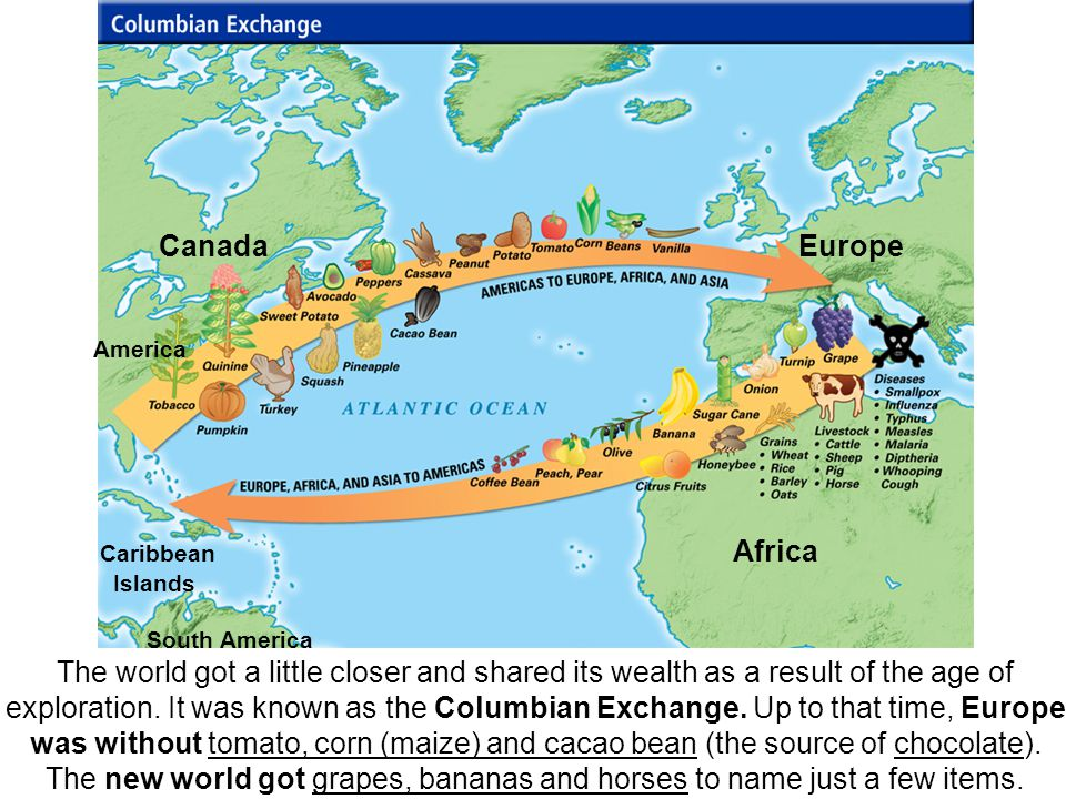 The world got a little closer and shared its wealth as a result of the age of exploration. It was known as the Columbian Exchange. Up to that time, Eu