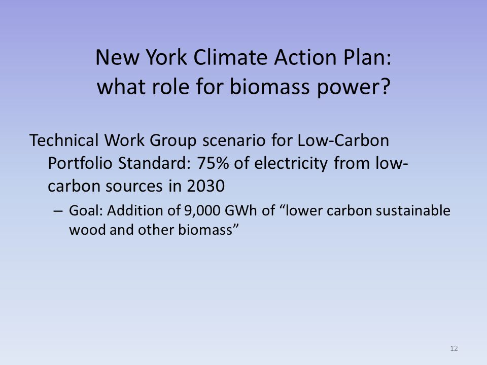 New York Climate Action Plan: what role for biomass power.