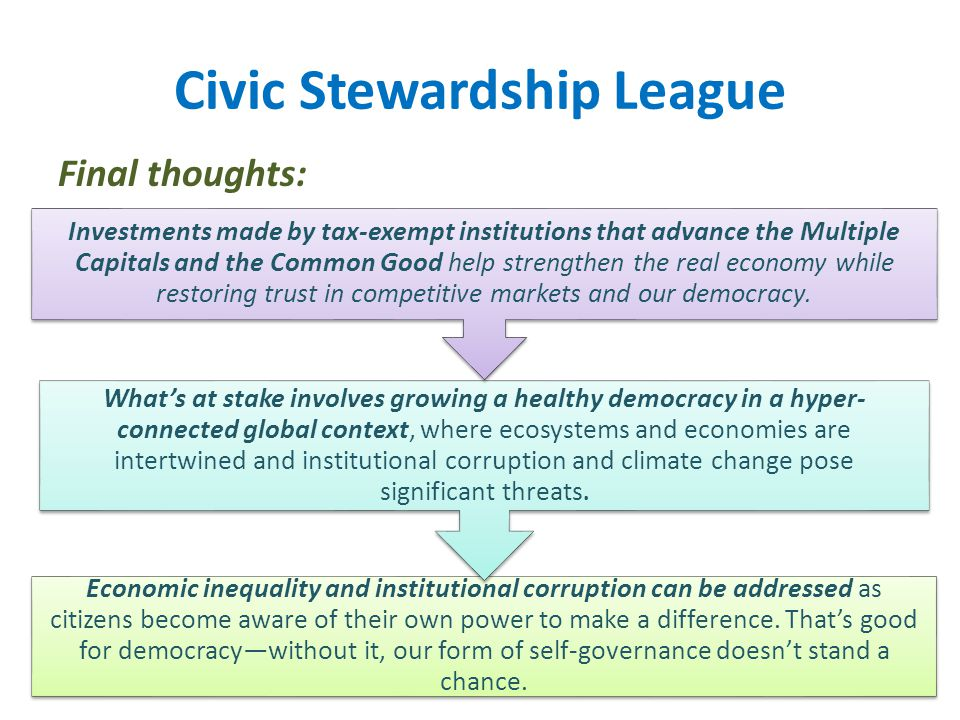 Civic Stewardship League Final thoughts: Economic inequality and institutional corruption can be addressed as citizens become aware of their own power to make a difference.