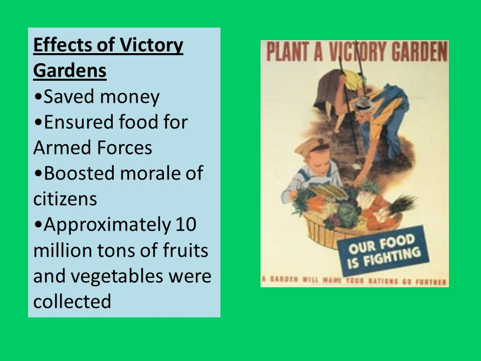Effects of Victory Gardens Saved money Ensured food for Armed Forces Boosted morale of citizens Approximately 10 million tons of fruits and vegetables