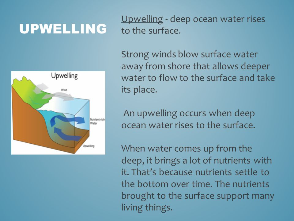 UPWELLING Upwelling - deep ocean water rises to the surface.