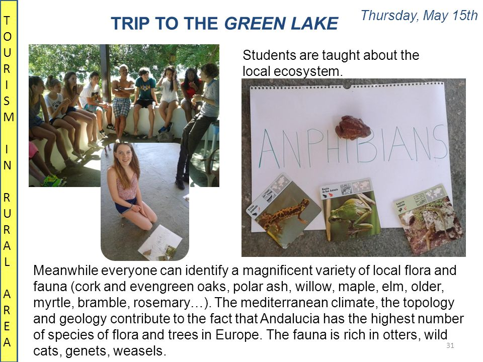Thursday, May 15th 31 TRIP TO THE GREEN LAKE TOURISM IN RURALAREATOURISM IN RURALAREA Meanwhile everyone can identify a magnificent variety of local flora and fauna (cork and evengreen oaks, polar ash, willow, maple, elm, older, myrtle, bramble, rosemary…).