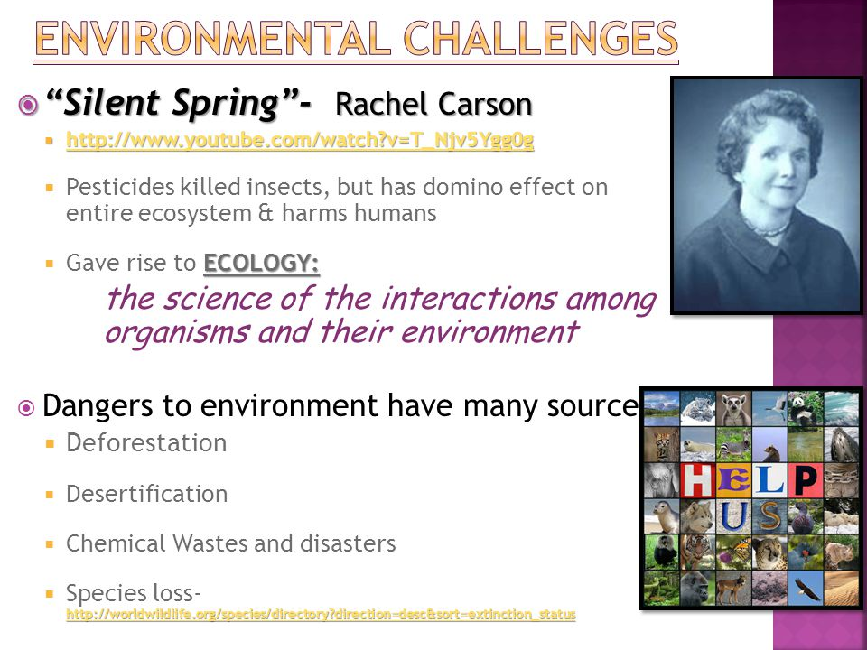  Silent Spring - Rachel Carson  http://www.youtube.com/watch v=T_Njv5Ygg0g http://www.youtube.com/watch v=T_Njv5Ygg0g  Pesticides killed insects, but has domino effect on entire ecosystem & harms humans ECOLOGY:  Gave rise to ECOLOGY: the science of the interactions among organisms and their environment  Dangers to environment have many sources:  Deforestation  Desertification  Chemical Wastes and disasters http://worldwildlife.org/species/directory direction=desc&sort=extinction_status http://worldwildlife.org/species/directory direction=desc&sort=extinction_status  Species loss- http://worldwildlife.org/species/directory direction=desc&sort=extinction_status http://worldwildlife.org/species/directory direction=desc&sort=extinction_status